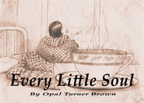 Every Little Soul - Self-Published Memoir